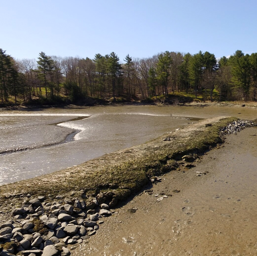 3-andercat-projects-nearview-lifestyle-image-river-bed-left-side